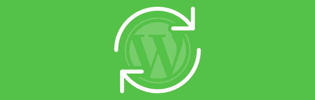 RIG-wordpress-blog-image-update