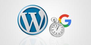 vitesse-wordpress