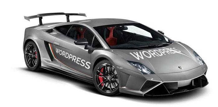 vitesse-wordpress1